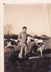 Deston Duke Cleland & Cow 1